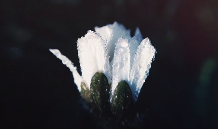 Что ожидает блудников и что не так в добрачных связях?